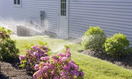 Photo of sprinklers watering grass